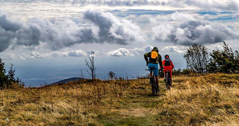 Zwei Personen werden von einem CicloSport Fahrradcomputer über eine Wiese navigiert
